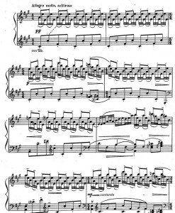 shamo-preludes-7-12