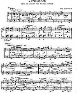 Variationen-op.25