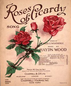 Roses-of-Picardy-1